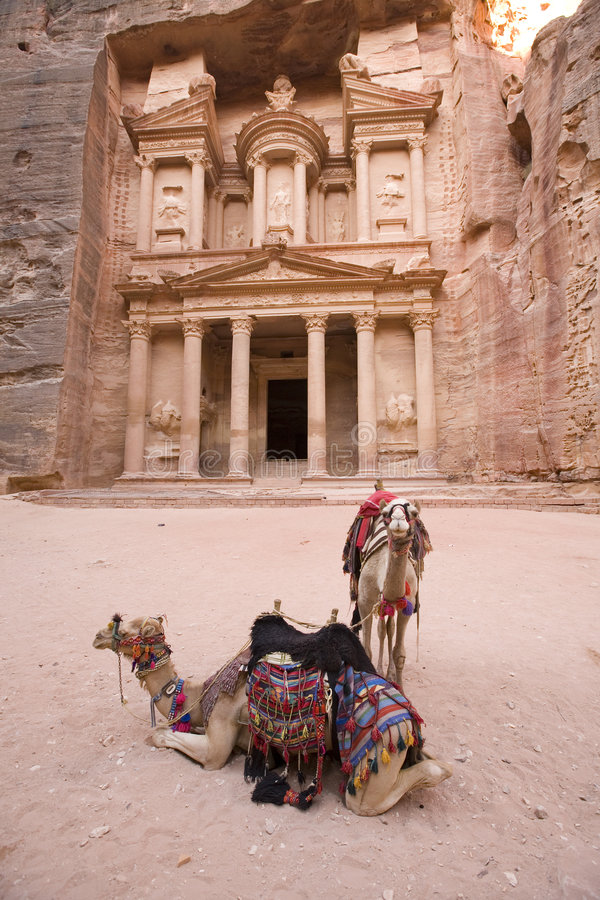 Two camels in front of Treasury at Petra Jordan. One of the seven new wonders of the world royalty free stock photos