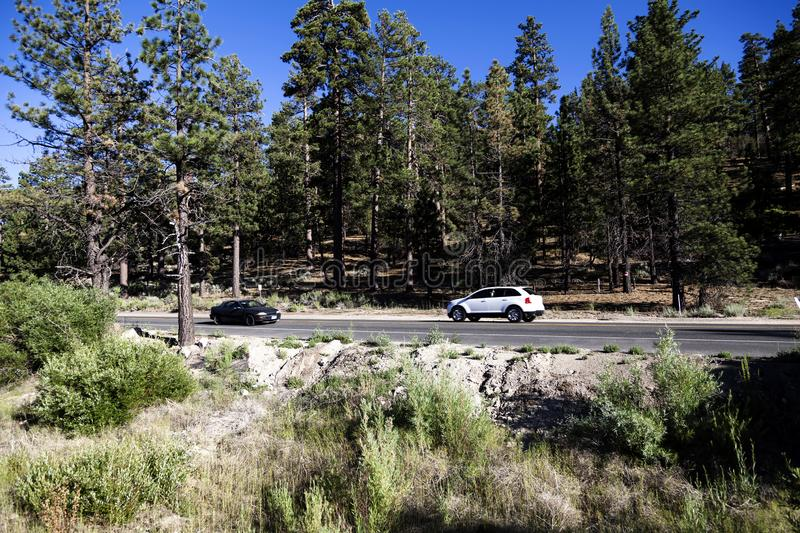 Two Cars On Rural Two Lane Highway With Pine Trees stock images