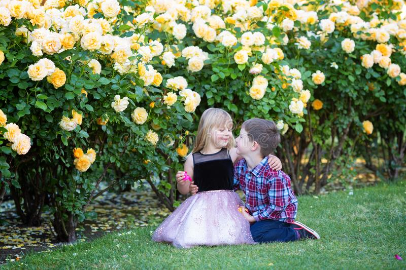 Two Caucasian kids sitting on a green grass in a rose garden and hugging, brother and sister, siblings, stock photos