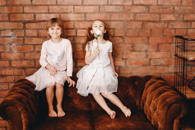 Two charming sisters dressed in beautiful dresses are sitting on the brown armchair on the background of a brick wall.  royalty free stock photos
