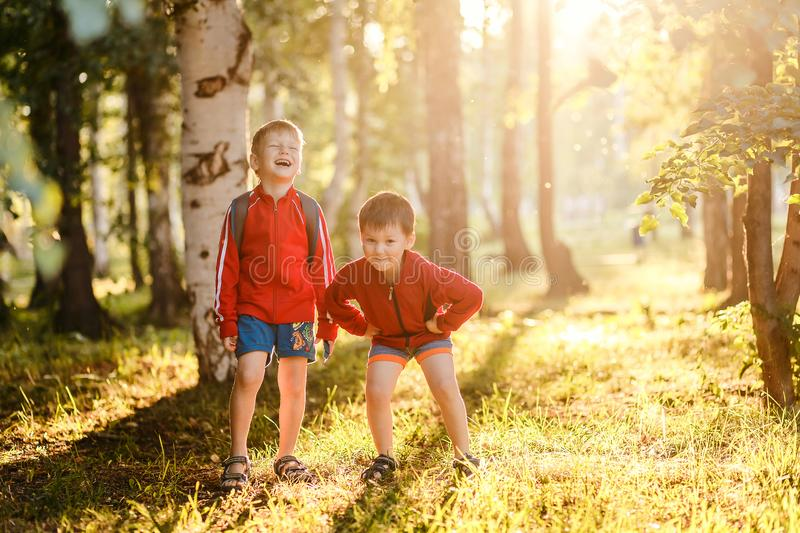 Two cheerful boys on the Sunny meadow. Two boys in shorts in the Park on warm summer evening royalty free stock photography