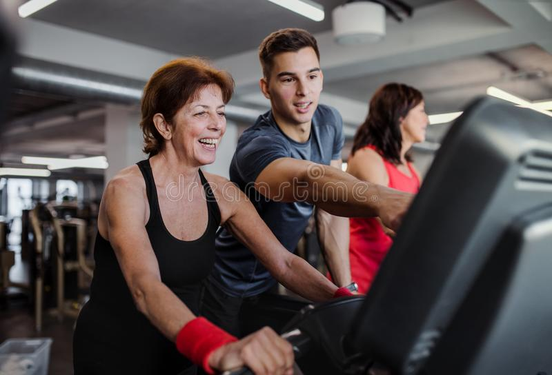Two cheerful female seniors in gym with a young trainer doing cardio work out. royalty free stock photo