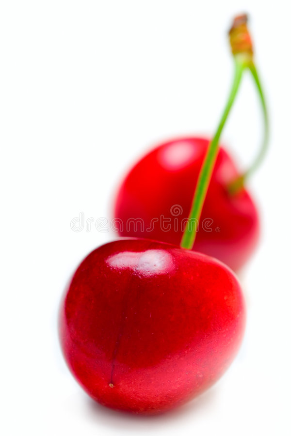 Two cherries stock images