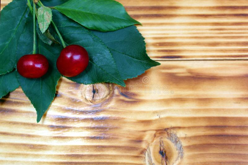 Two cherries lie on green leaves on a green background. Cherry, juicy, ripe, dark, burgundy, texture, scattered, leaves, summer, season, background picture royalty free stock photo