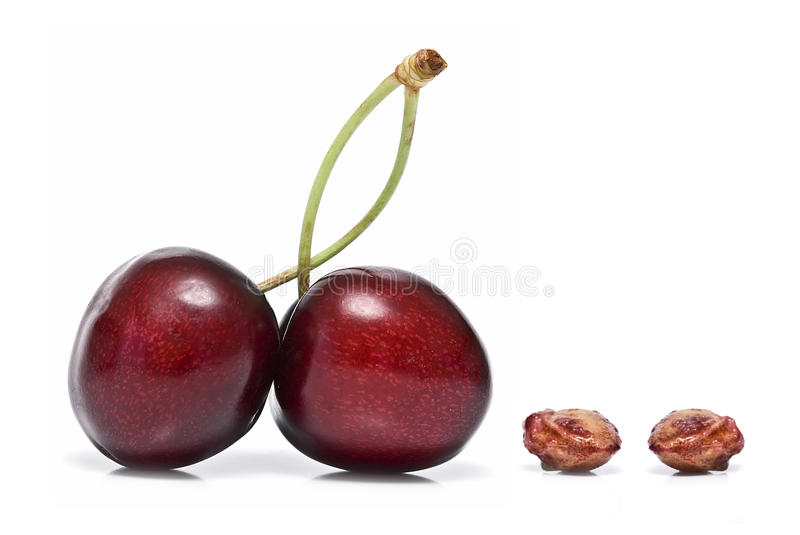 Download Two Cherries And Two Bones. Stock Image - Image: 14858973