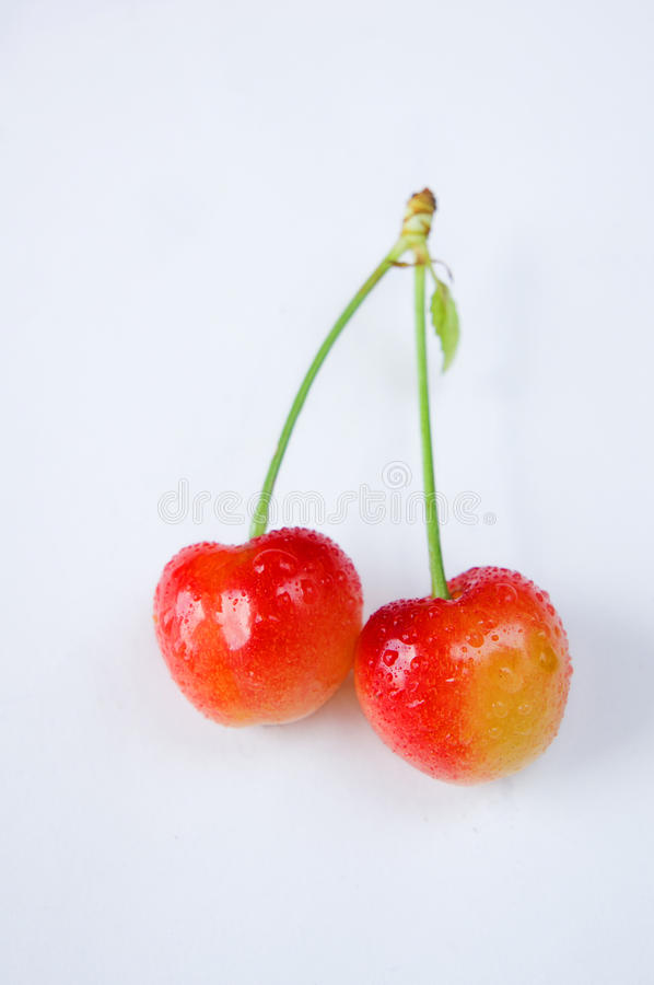 Two cherry fruit on the tail isolated on white stock photography