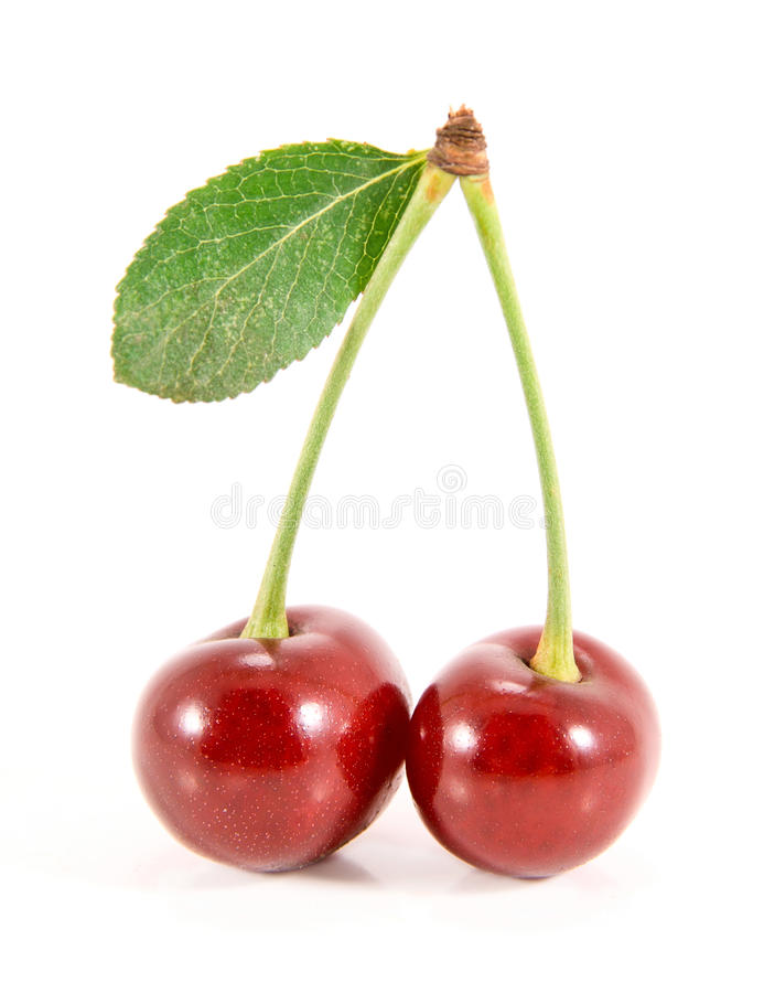 Two cherry fruits with leaf. stock photo