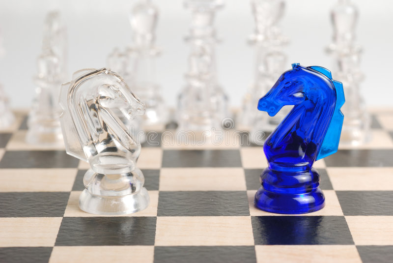 Two chess horse royalty free stock photography