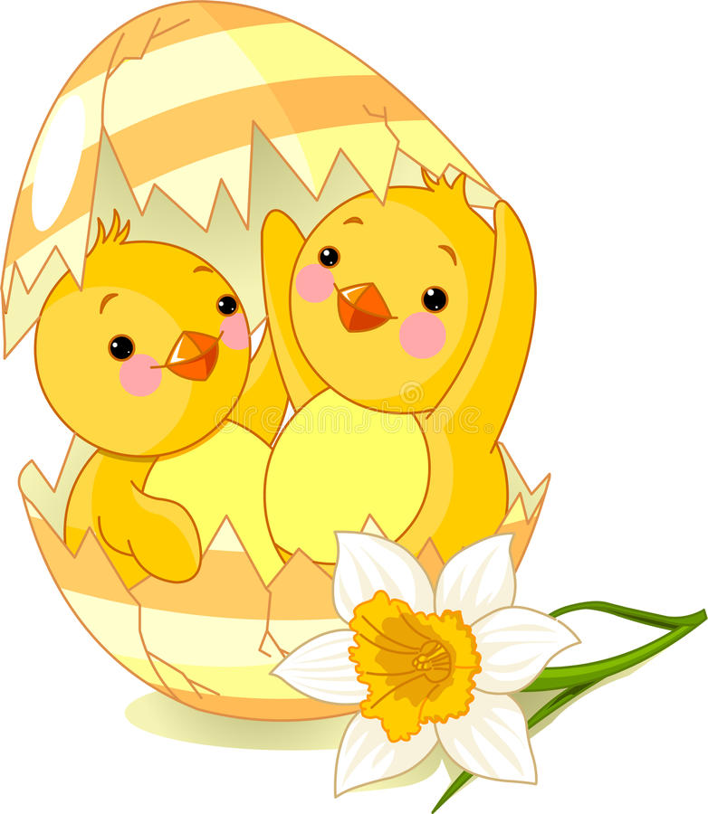 Free Two Chickens Hatched From Egg Royalty Free Stock Photo - 13674285