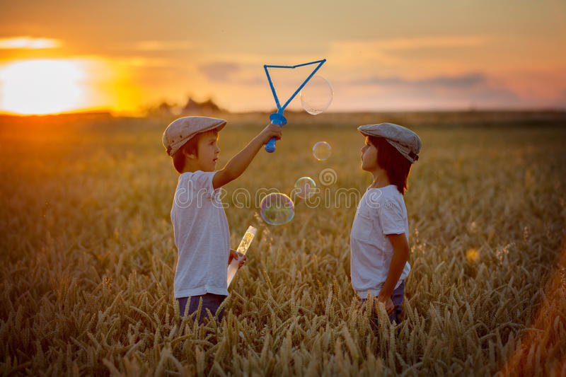 Two children, boys, chasing soap bubbles in a wheat field on sun. Two cheerful children, boys, chasing soap bubbles in a wheat field on sunset, summertime royalty free stock image