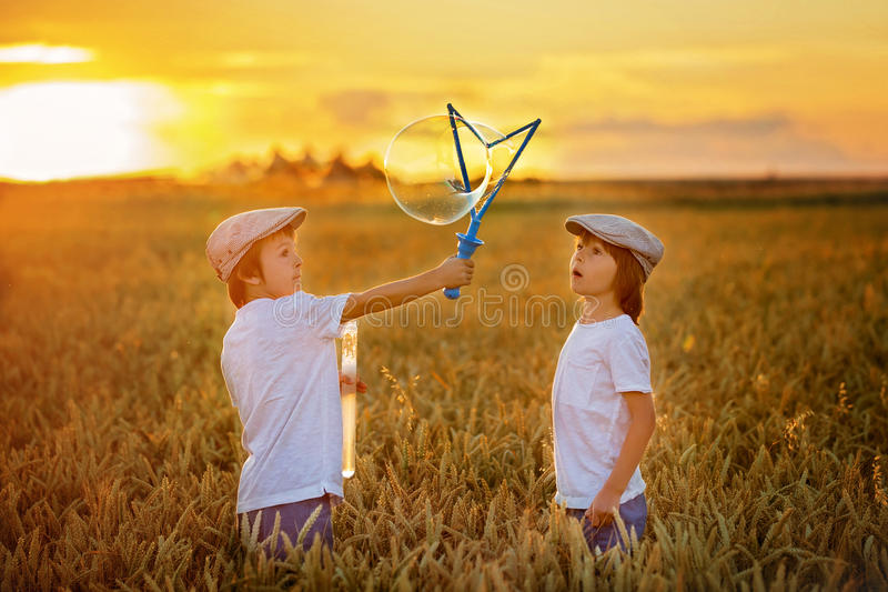 Two children, boys, chasing soap bubbles in a wheat field on sun. Two cheerful children, boys, chasing soap bubbles in a wheat field on sunset, summertime stock images
