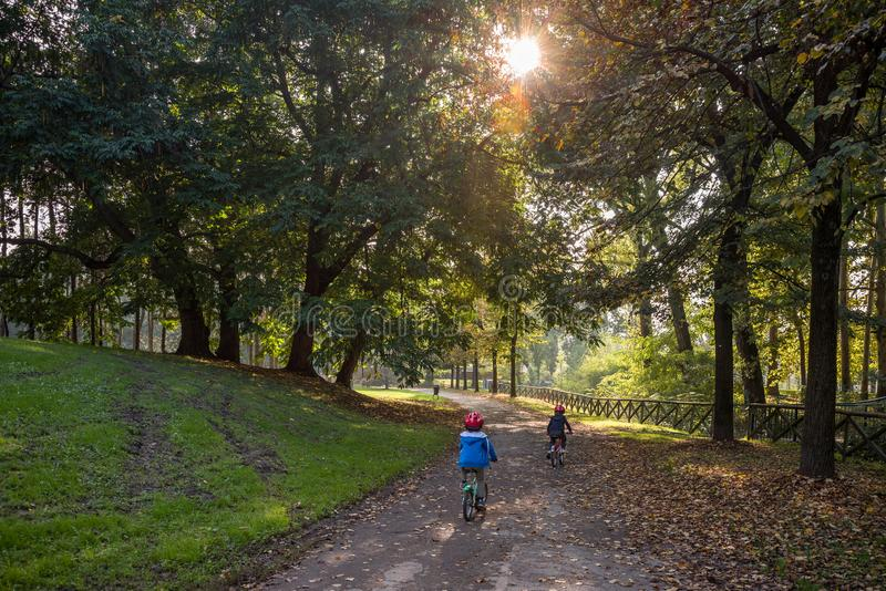 Two children cycling in the forest. At sunset in backlight royalty free stock photo