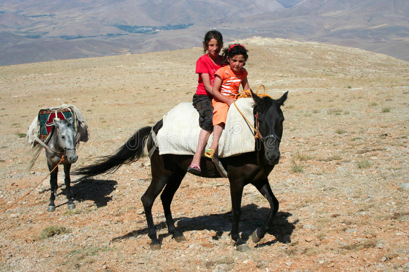Download Two children on donkey stock photo. Image of person, view - 17271888