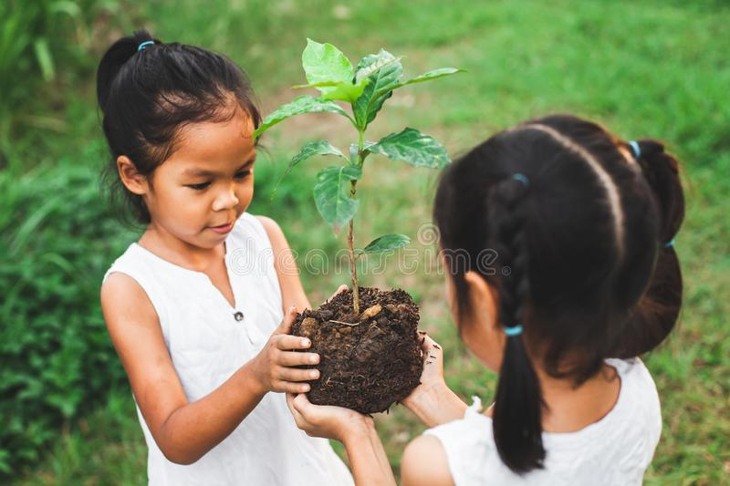 Two children girl holding the young tree for planting together. As save world concept royalty free stock photos