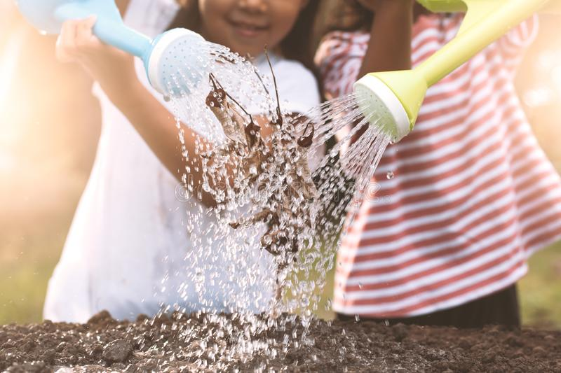 Two children little girl watering dry tree with watering pot stock photos