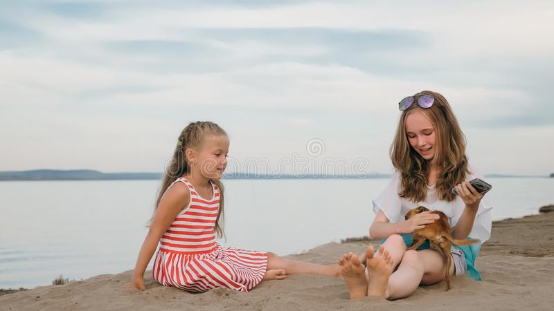 Two children playing which dogs on the sand on the beach. stock photo