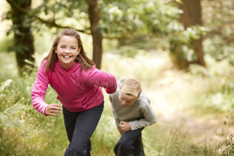 Two children walking in a forest amongst greenery smiling at camera, front view, focus on foreground royalty free stock photos