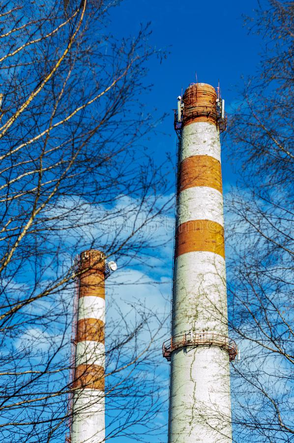 Two chimneys of a boiler room are white pipes with red stripes against a blue sky, through tree branches. royalty free stock images