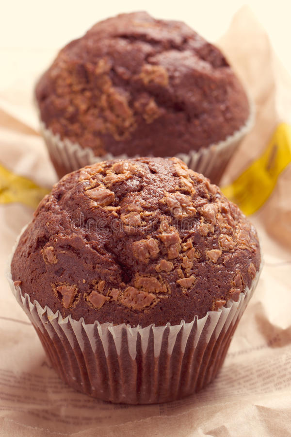 Download Two chocolate muffins stock photo. Image of dessert, cups - 38406570