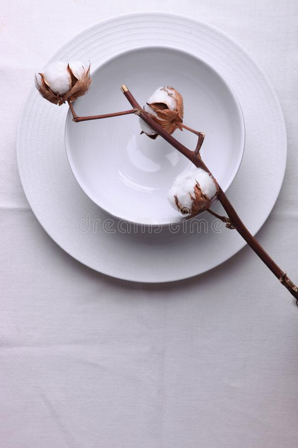 Two clean white plates and cotton. On white tablecloth. Concept dishes, table setting. Top view, copy space stock photo