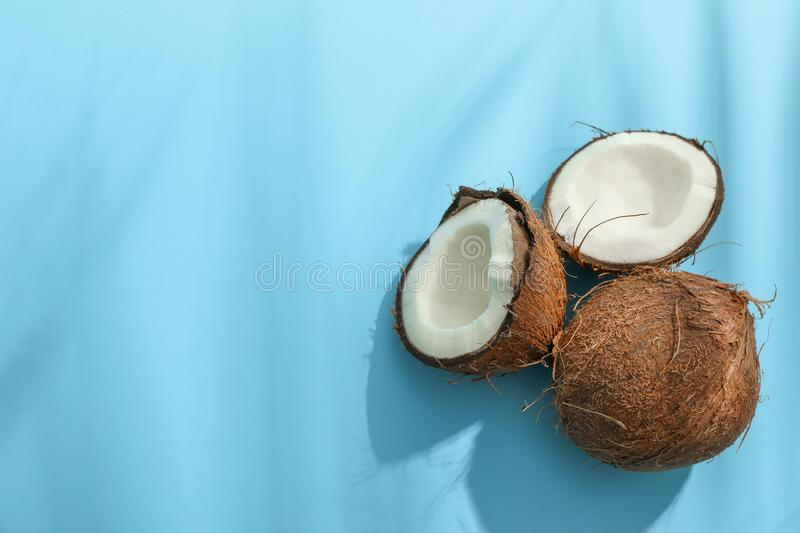 Two coconut one of which split royalty free stock photo