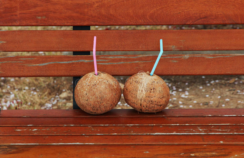 Download Two Coconuts stock image. Image of korea, relax, meditate - 39943481