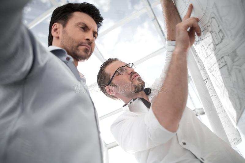 Two colleagues discussing work on a new project stock photo