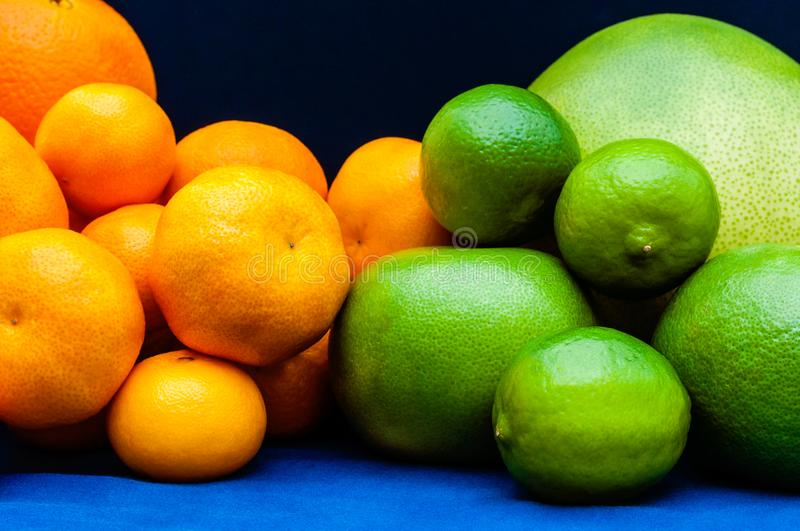 Two color groups of Citruses. Oranges, tangerines, limes, pomelo, grapefruits. royalty free stock photography