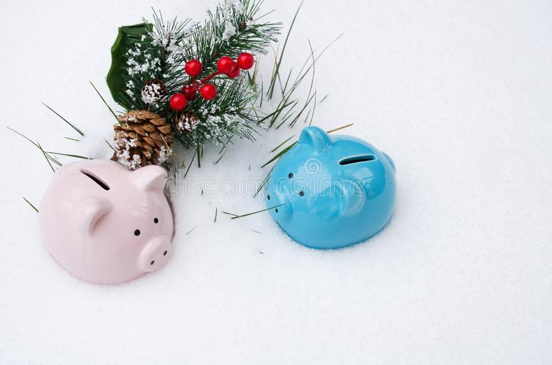 Two colorful piggy banks lie on the snow with a spruce branch and red berries stock photography