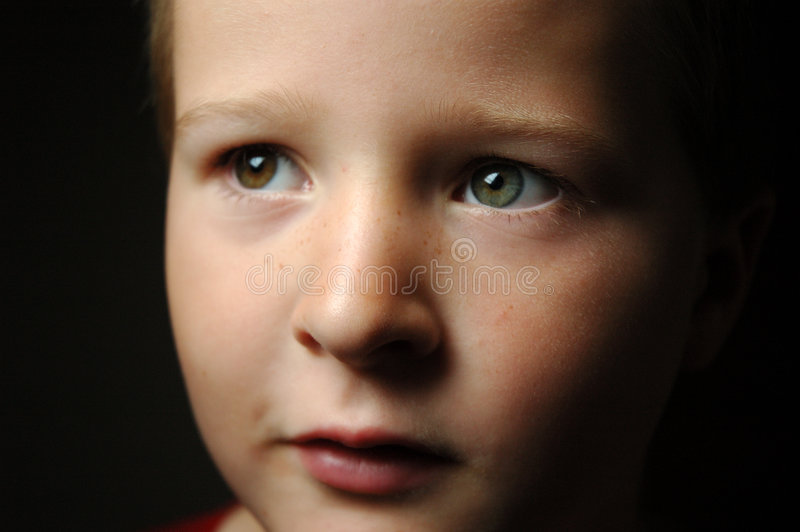 Two Coloured eyes royalty free stock photography