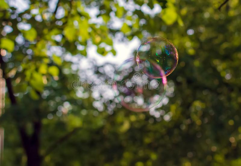 Two coloured translucent soap bubbles floating outdoors in the air stock photography