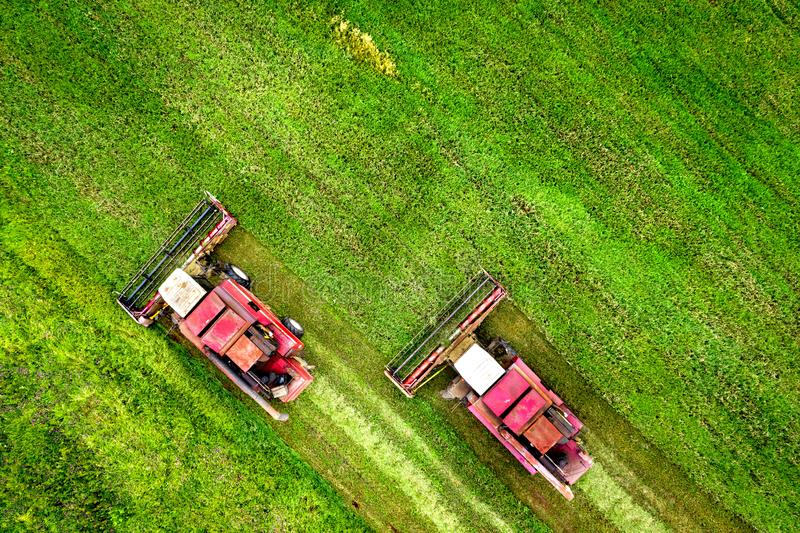 Two combine harvesters on green field. Agriculture concept. Harvest season. Combines harvesting on agricultural field royalty free stock photography