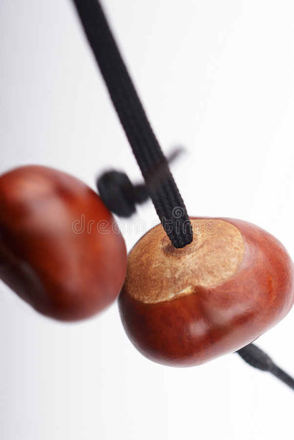 Two conkers hitting royalty free stock image