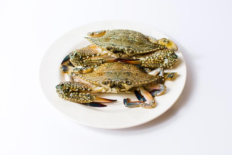 Two crabs on a plate isolated stock photo