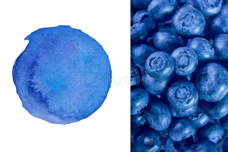 Two creative layers template for your logo. Watercolor texture and blueberry texture background - great creative background for social media royalty free stock image