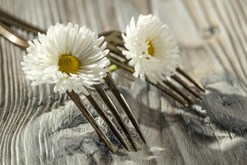 Two crossed forks with small white flowers on vintage wooden board background. Some empty space for text or decoration stock images