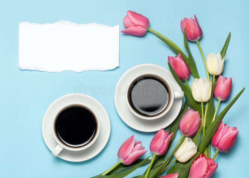 Two Cups of coffe and pink tulips on blue background. royalty free stock image