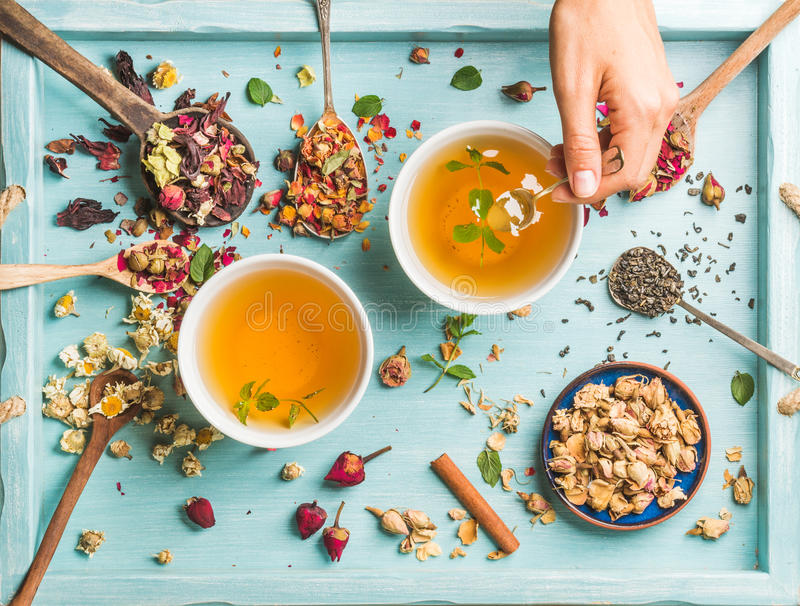 Two cups of healthy herbal tea with mint, cinnamon, dried rose, camomile flowers in spoons and man's hand holding spoon. Two cups of healthy herbal tea with mint royalty free stock image