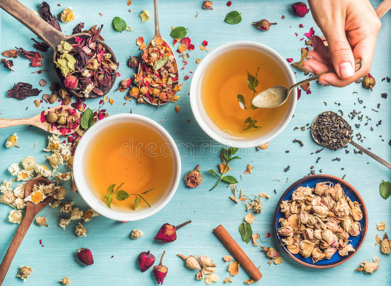Two cups of healthy herbal tea with mint, cinnamon, dried rose, camomile flowers in spoons and man's hand holding spoon. Two cups of healthy herbal tea with mint stock photo