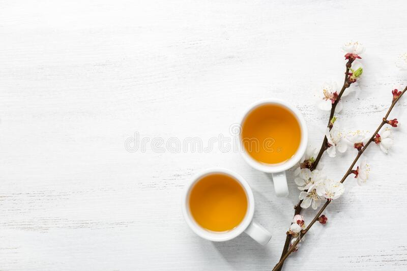Two cups of tea and branches of blossoming apricot on a white rustic table with empty space for text or image. Top view.  royalty free stock photography