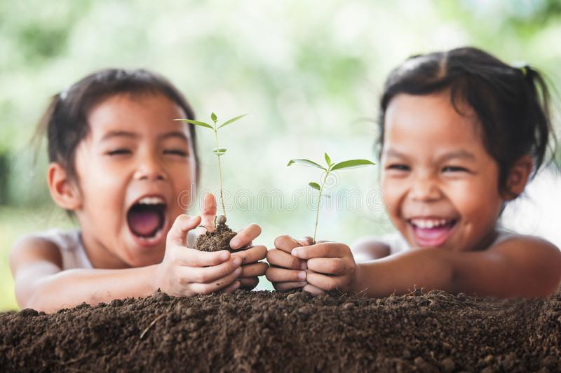 Two cute asian child girls planting young tree on black soil royalty free stock photos