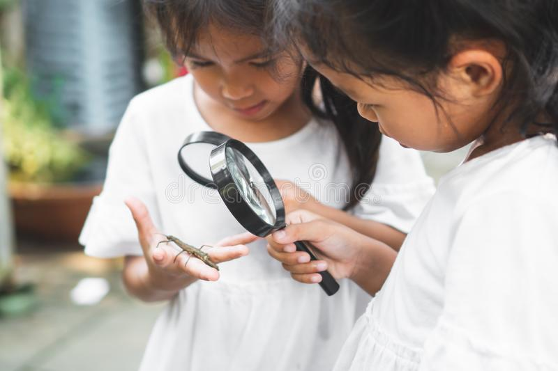 Two cute asian child girls using magnifying glass watching and learning on grasshopper that stick on hand with curious and fun. In the zoo royalty free stock photo