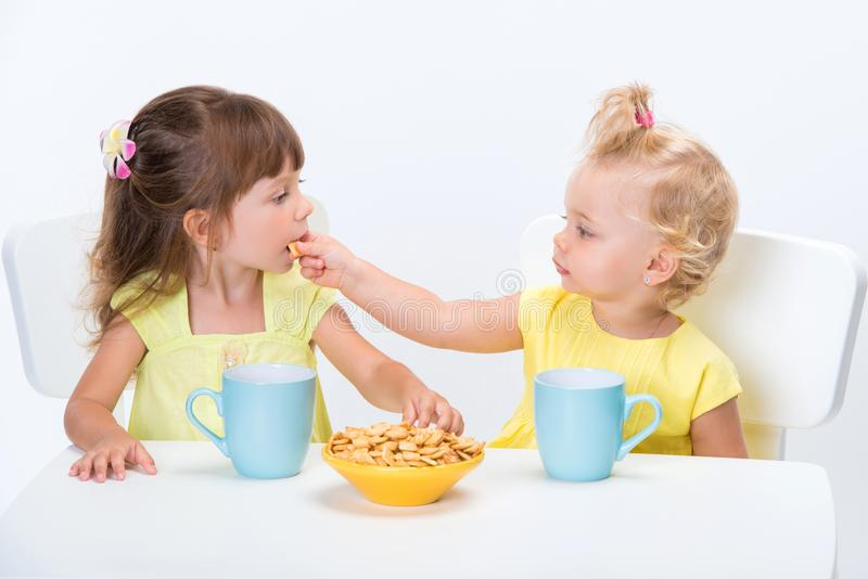 Two cute little girls sisters eating cereal flakes and drinking a cup of milk or tea at the table isolated on white background stock photo