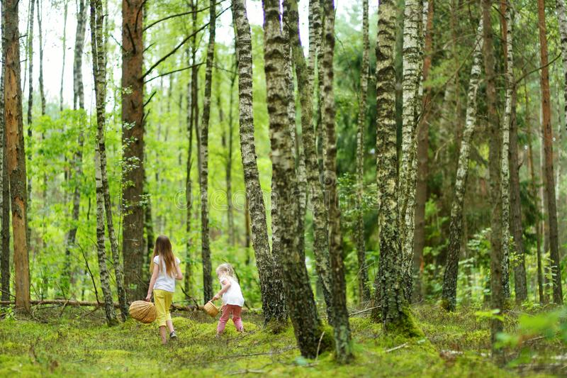 Two cute little sisters having fun during forest hike on beautiful summer day. Active family leisure with kids. Family fun royalty free stock image