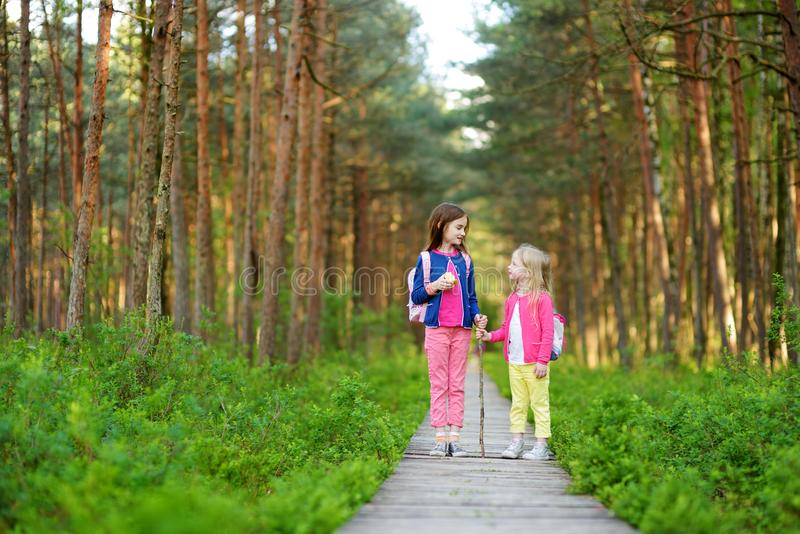 Two cute little sisters having fun during forest hike on beautiful summer day. Active family leisure with kids. Family fun stock photography