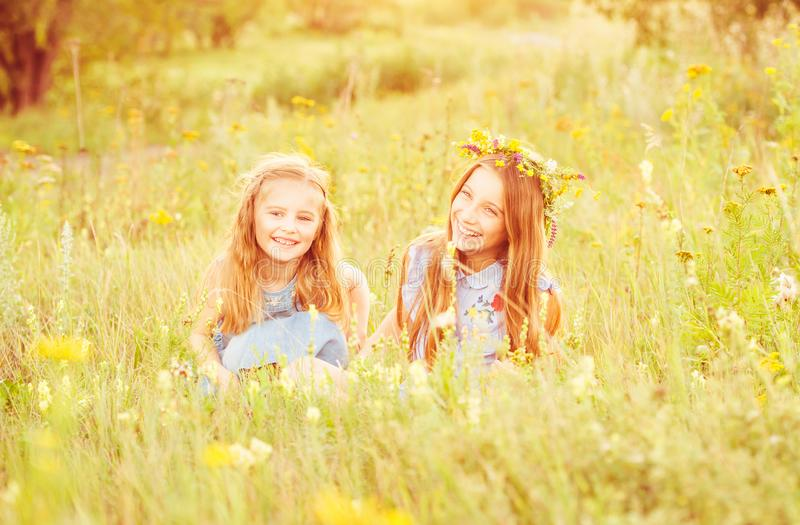 Two cute little sisters on a meadow royalty free stock photography