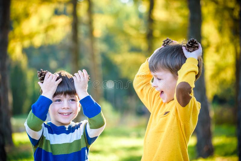 Two Cute sibling little boy playing together with two big pine cones outdoors. stock photo