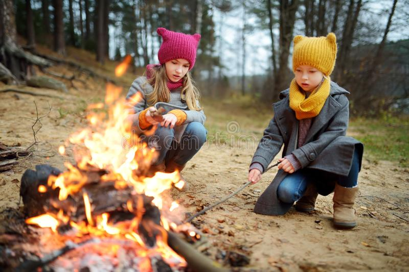 Two cute young girls sitting by a bonfire on cold autumn day. Children having fun at camp fire. Camping with kids in fall forest stock photography