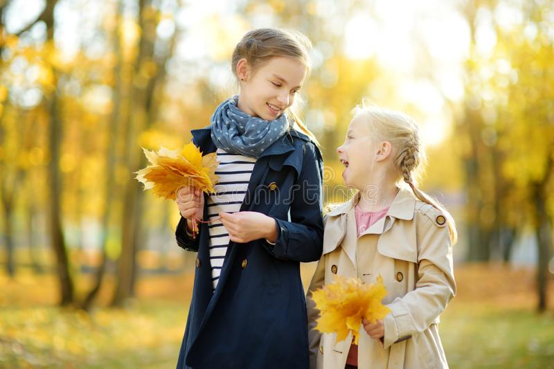 Two cute young sisters having fun on beautiful autumn day. Happy children playing in autumn park. Kids gathering yellow fall royalty free stock images