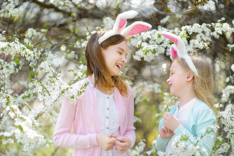 Two cute young sisters wearing bunny ears in blooming cherry garden on beautiful spring day. Kids hanging Easter eggs on. Blossoming cherry branches. Children royalty free stock image